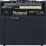 RolandKC 350