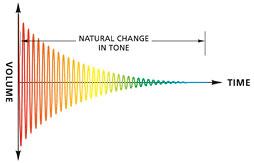 mô hình âm thanh roland rp 102