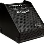 Amply Roland PM-10