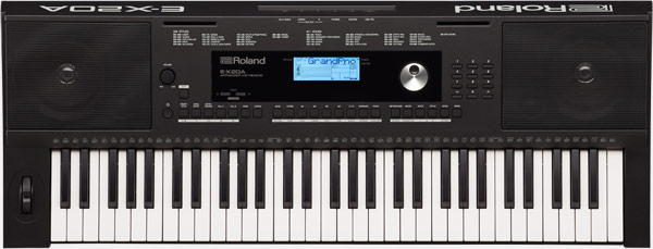 đàn organ roland e-x20a
